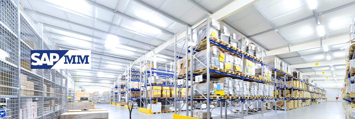 SAP MM | Controle de produtos, estoque, faturas, consumo